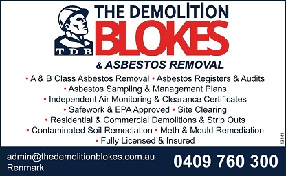 banner image for The Demolition Blokes & Asbestos Removal